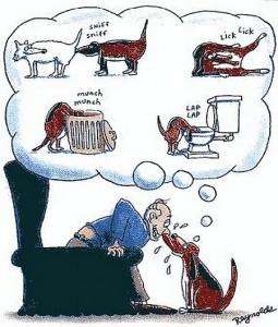 Výsledek obrázku pro vtipy o psech